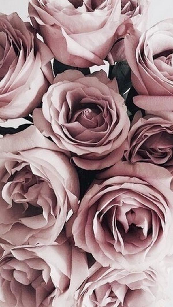 Esthetique Rose Gold Roses On We Heart It Flower Background Images Flower Wallpaper Flower Backgrounds