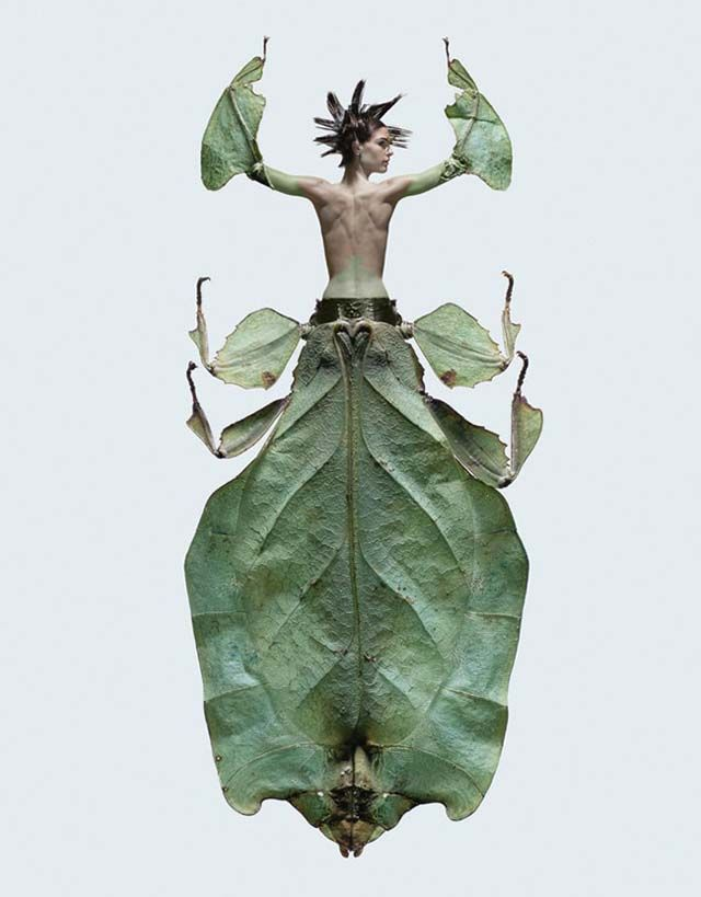 """These striking woman-insect creatures are from """"Insectes,"""" a series of photo composites by photographer Laurent Seroussi"""
