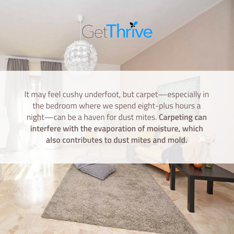 Steam Cleaning Carpet On A Regular Basis Can Help Reduce The Presence Of Dust Mites And Other Allergens In Your H How To Clean Carpet Dust Mites Steam Cleaning