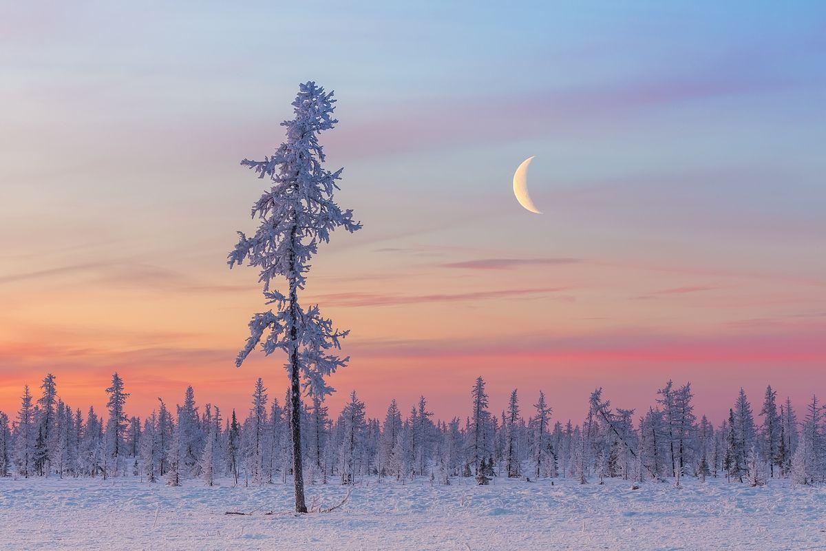 Картинки севера природа севера, картинки именем
