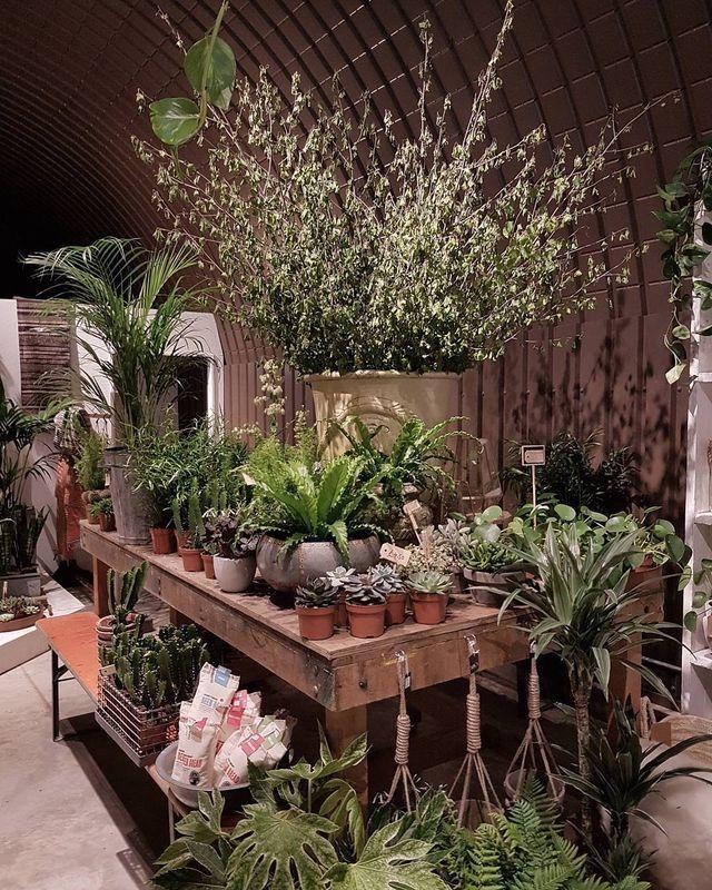 Indoor Garden Center Pin by mayumi williamson on florist pinterest garden shop gardens garden center displaysgarden centreindoor workwithnaturefo