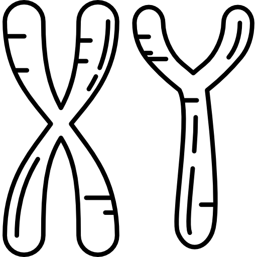 Masculine chromosomes | Free Icon #Freepik #freeicon #medicine #dna #biology #genetic