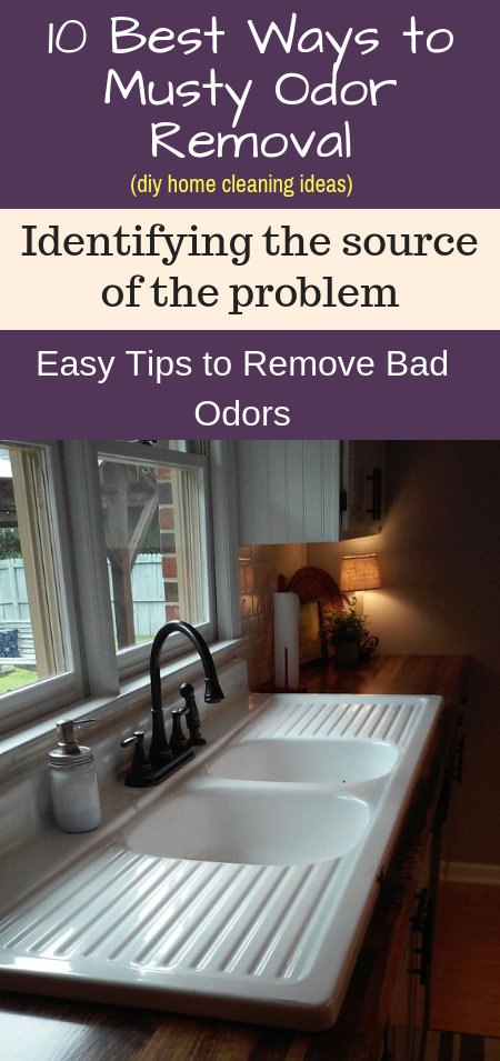 How To Get Rid Of Musty Smell 10 Best Ways For Musty Odor Removal Musty Smell In House House Odors Old House Smells