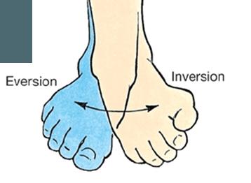 Inversion Definition