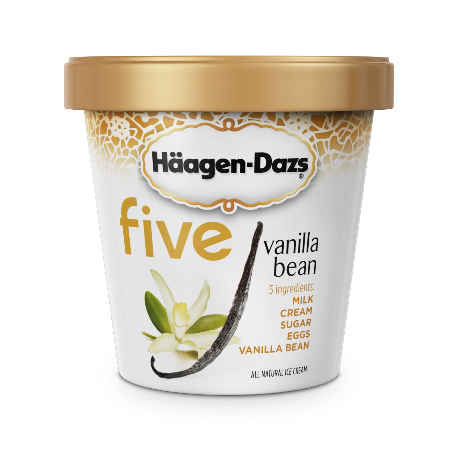 haagen dazs external environment General mills: häagen-dazs ice cream brand it's a singular pleasure that millions of people enjoy every day and night.