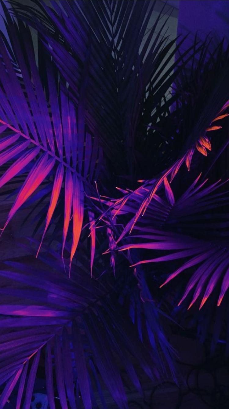 Pinterest Keriaah Neon Wallpaper Tumblr Wallpaper Neon Backgrounds
