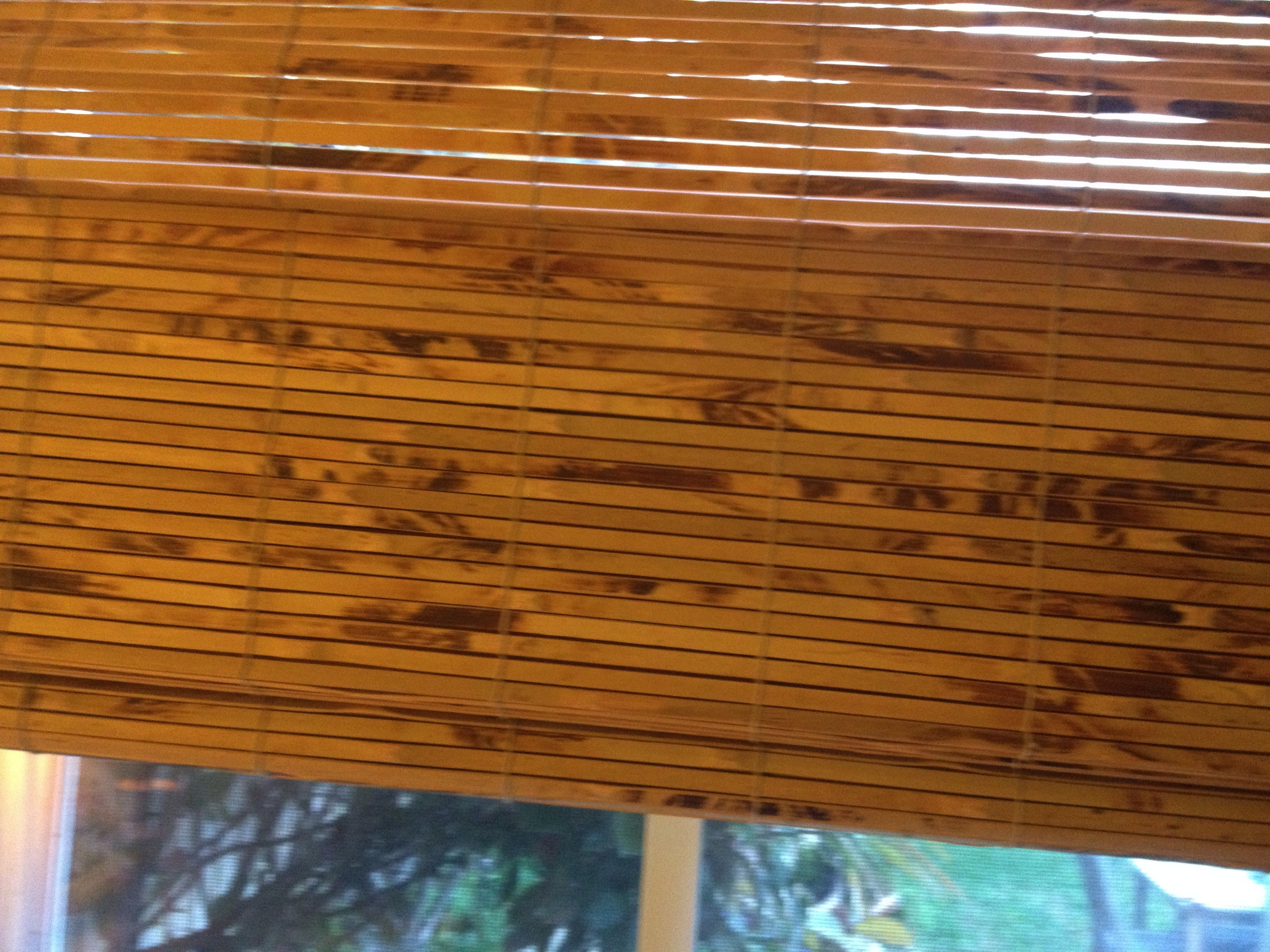 Bamboo Roman Shades  Note The String Is Light Color