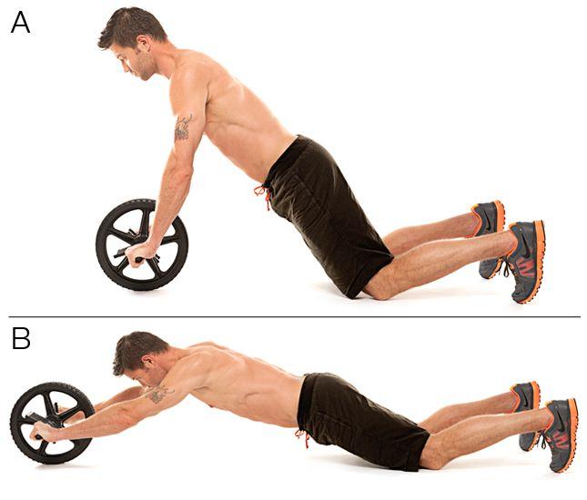 ab wheel   un exercice de gainage en mouvement pour travailler tous les muscles abdominaux  l