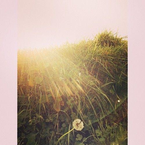 loki | Tumblr