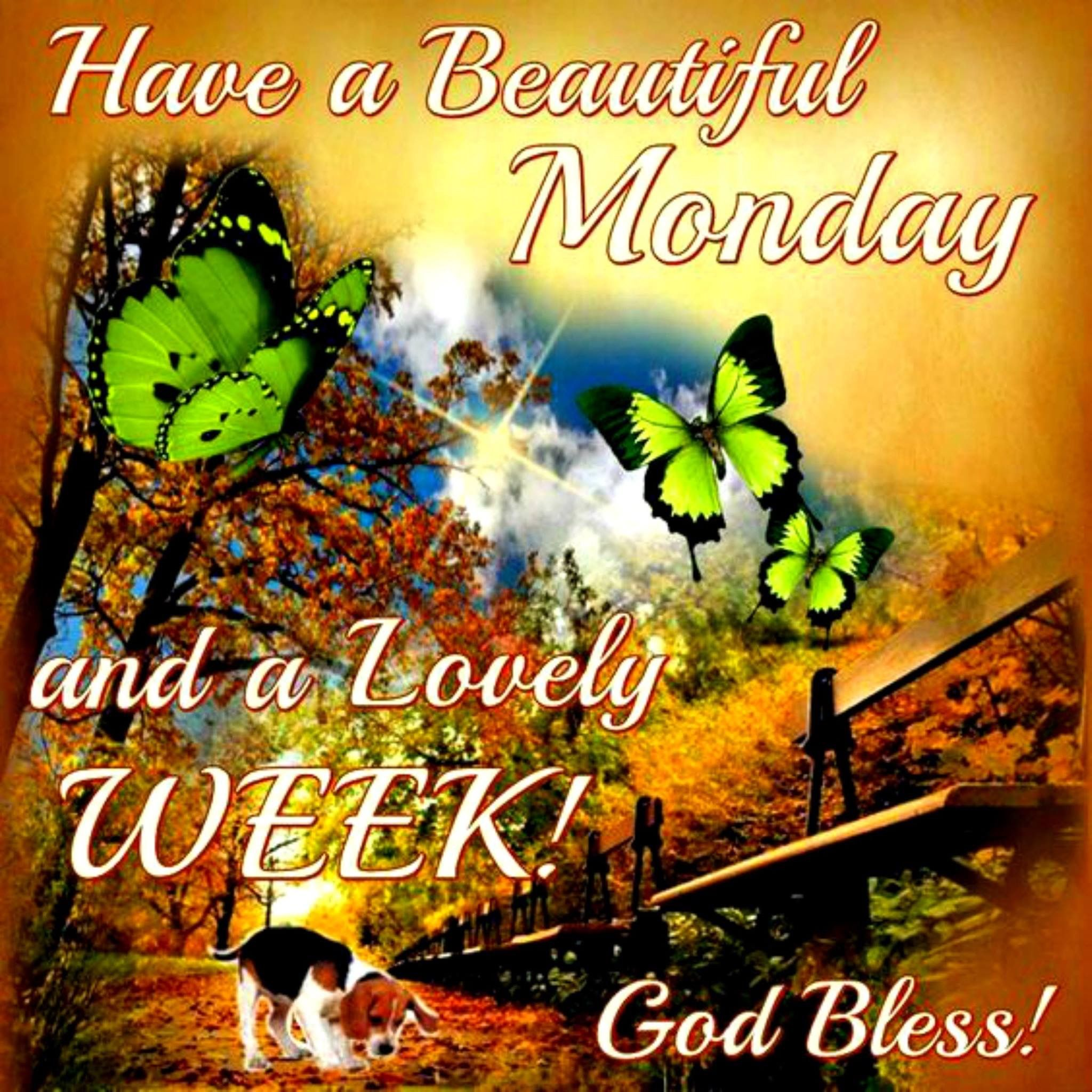Monday Greetings Pinterest Monday Blessings Blessings And