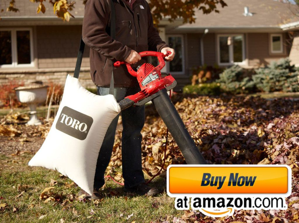 Toro Leaf Vacuum Mulcher Vacuums Leaves Best Vacuum