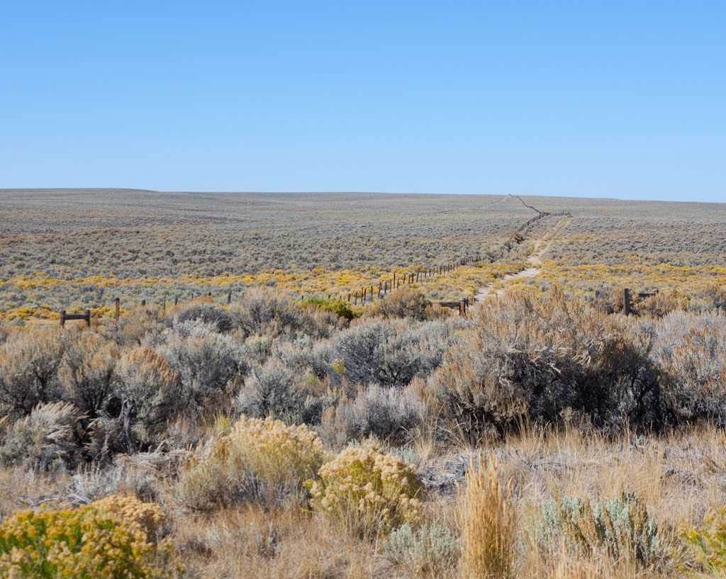 Which Saved About 5 Day On The Trail You Can Still See The Wagon Ruts Bozeman Trail Oregon Trail Wagon Trails