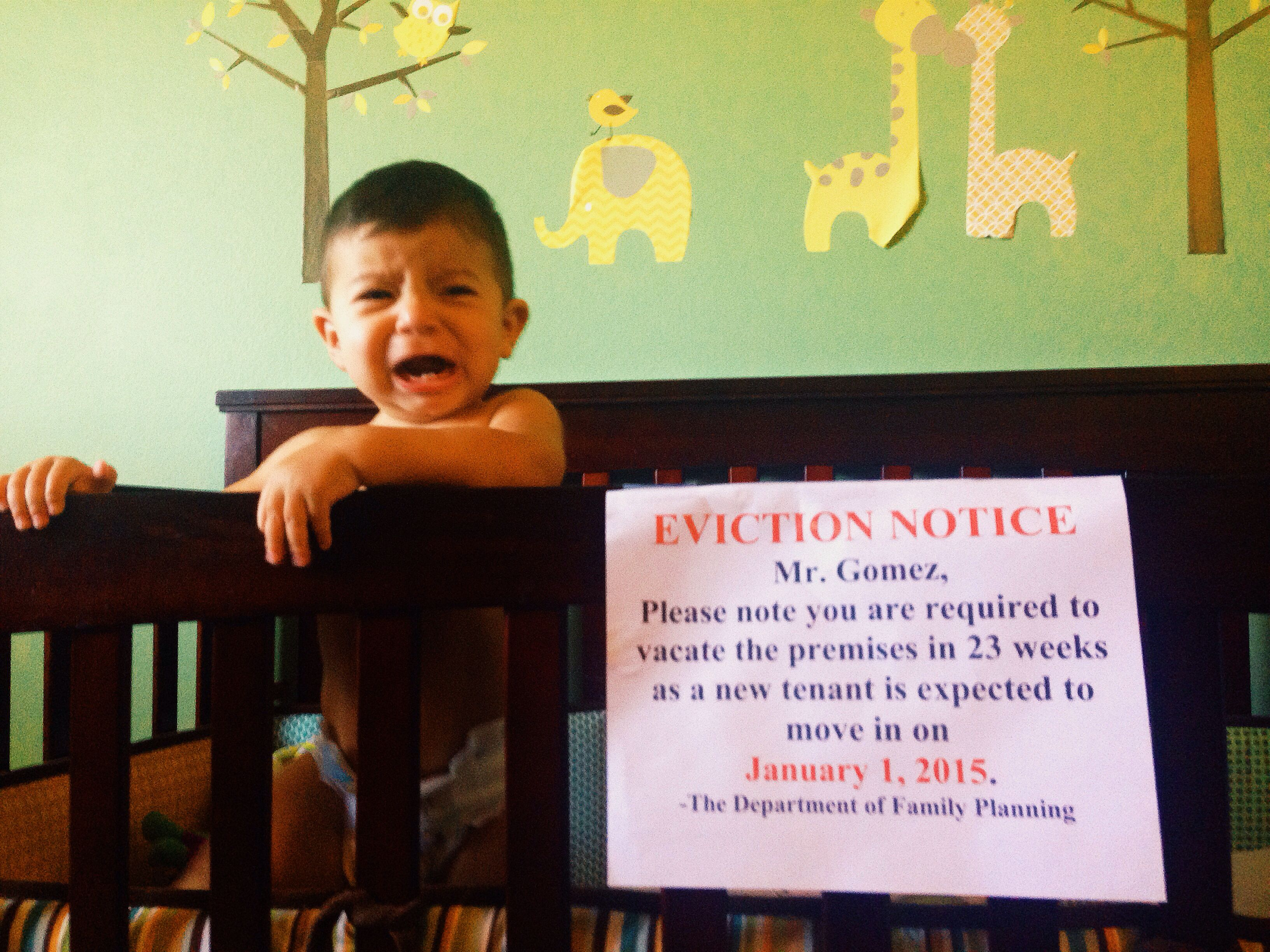 Crib Eviction Notice Cute Way Of Announcing A Second Pregnancy