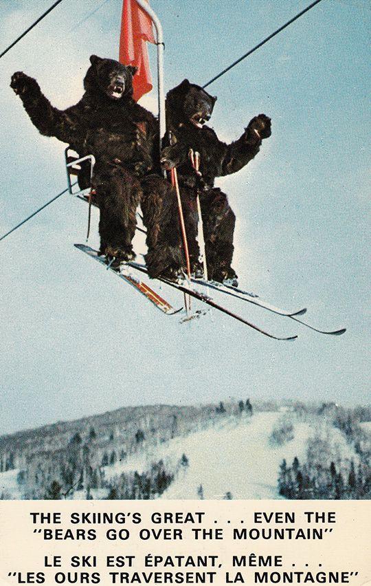 Ski Bears Vintage Ski Posters Vintage Ski Skiing