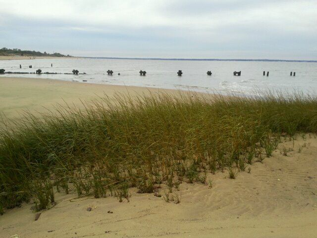 Ideal Beach In Middletown Nj 9 17 11