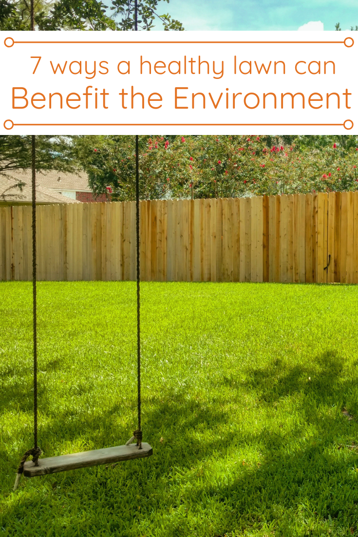 A Well Maintained Lawn Is More Than It Looks Like It S An Air Purifier Air Conditioner Soil Stabilizer Noise Muffler Safe Healthy Lawn Lawn Care Tips Lawn
