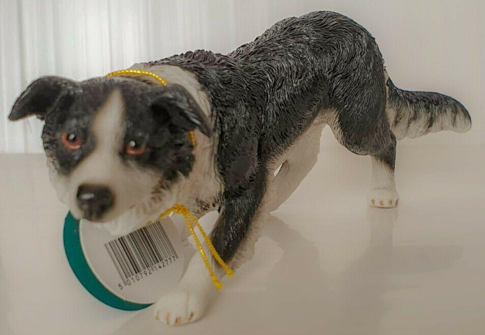 Leonardo Collection Dog Studies Border Collie Walking Lp14277