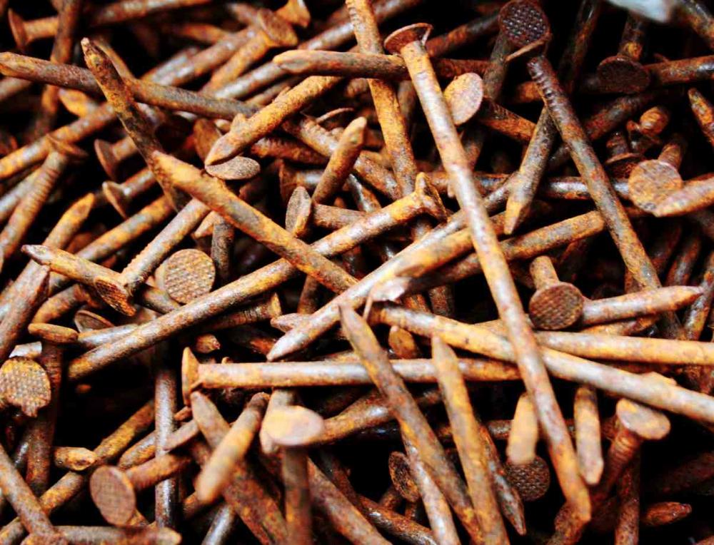 Rusty Nails Gardening Myth Laidback Gardener Rusty Nail Nail Garden Rusty
