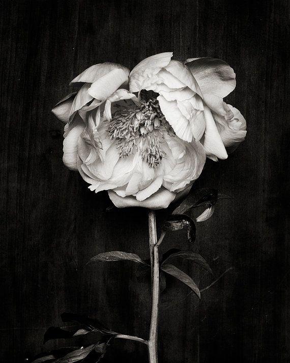 black and white_no_3 van kariherer op Etsy