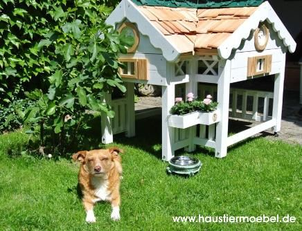 Pet Furniture Animal House Furniture Shop Exceptional Living Ideas For Animals From A Master Direct From Manufacturer Casas Para Perros Perros Mascotas