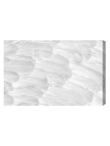 Pure White (Canvas) by Oliver Gal at Gilt