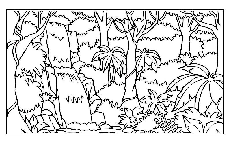 Rainforest Coloring Pages Endangered Species Coloring Pages For Free 9 Color Jungle Coloring Pages Enchanted Forest Coloring Book Enchanted Forest Coloring