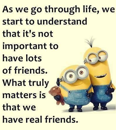 pinsusan levy on quotes  comics  cute minion quotes