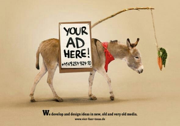 Pin by chandu on funny animals Advertising design, Funny