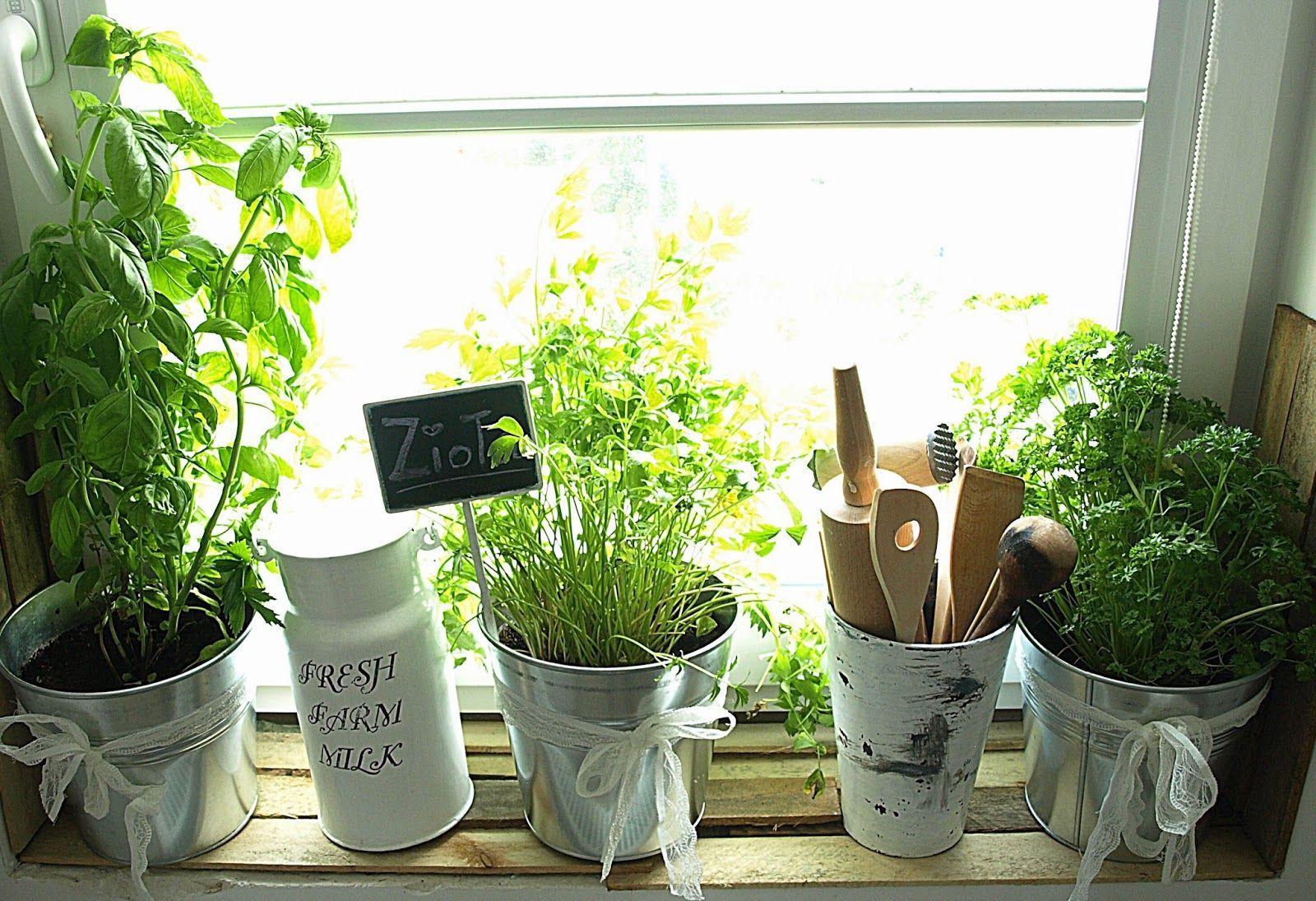 Ziola Na Kuchennym Parapecie Anielno Planter Pots Planters Pot
