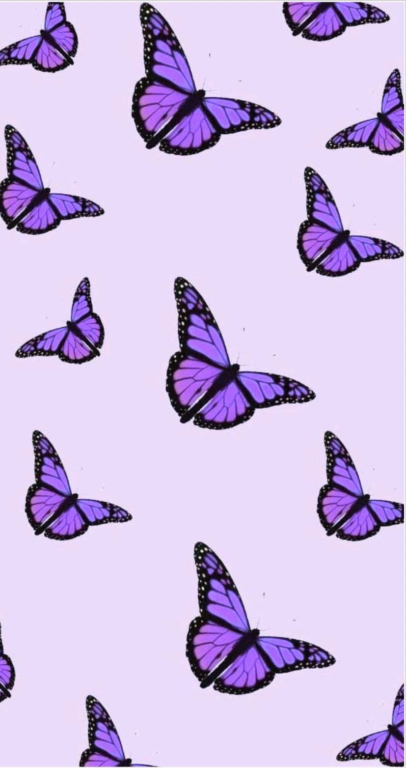 Purple Butterfly Aesthetic In 2020 Butterfly Wallpaper Iphone Purple Wallpaper Iphone Cute Patterns Wallpaper