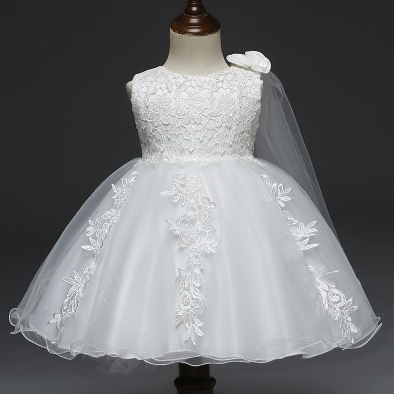 Beautiful Lace Embroidered Flower Sleeveless Tulle Party Dress for Baby Girl