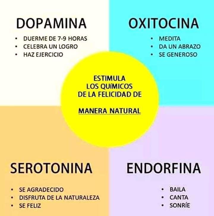 Estimulacion Natural Neurotrasmisores Hormonas Bienestar Bienestar Emocional Psicologa Emocional Consejos Para La Salud