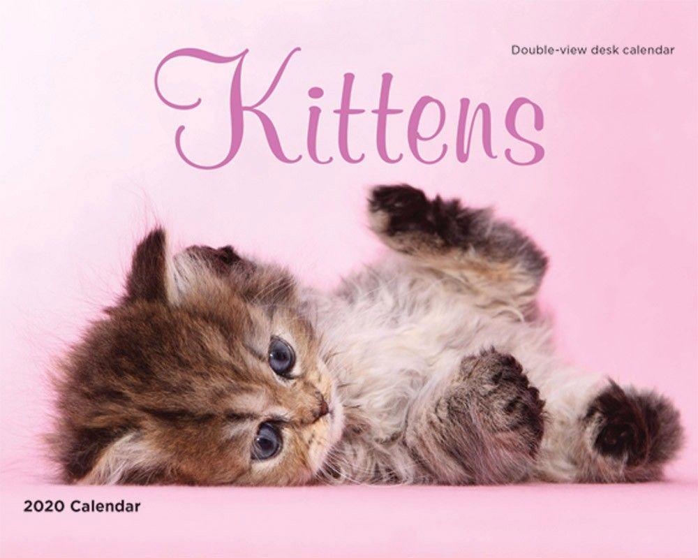 Kittens Easel Calendar Kittens Pets Cats Cat Family