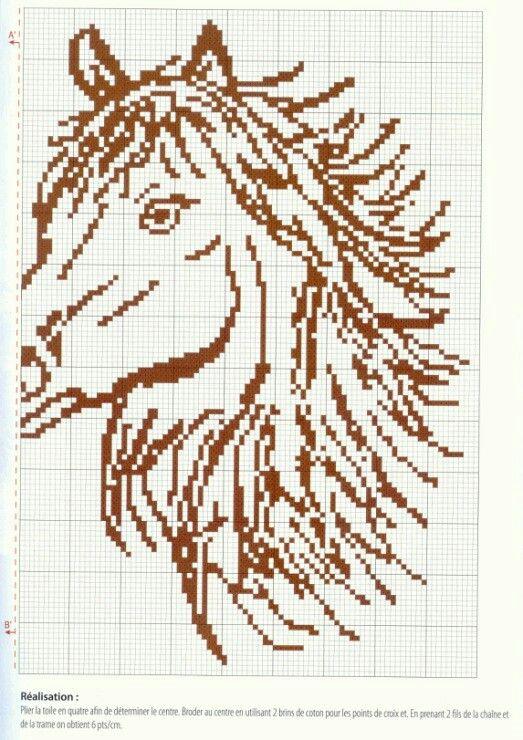 Deel 2 paarden hoofden