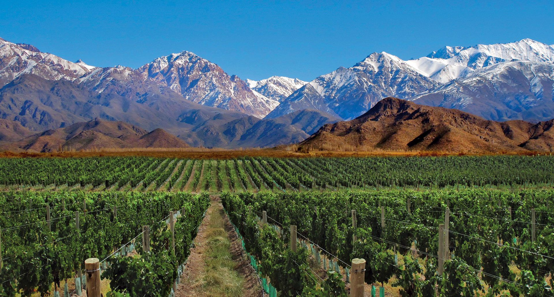 Hotels For Wine Lovers Vineyard Hotels In Argentina Tablet