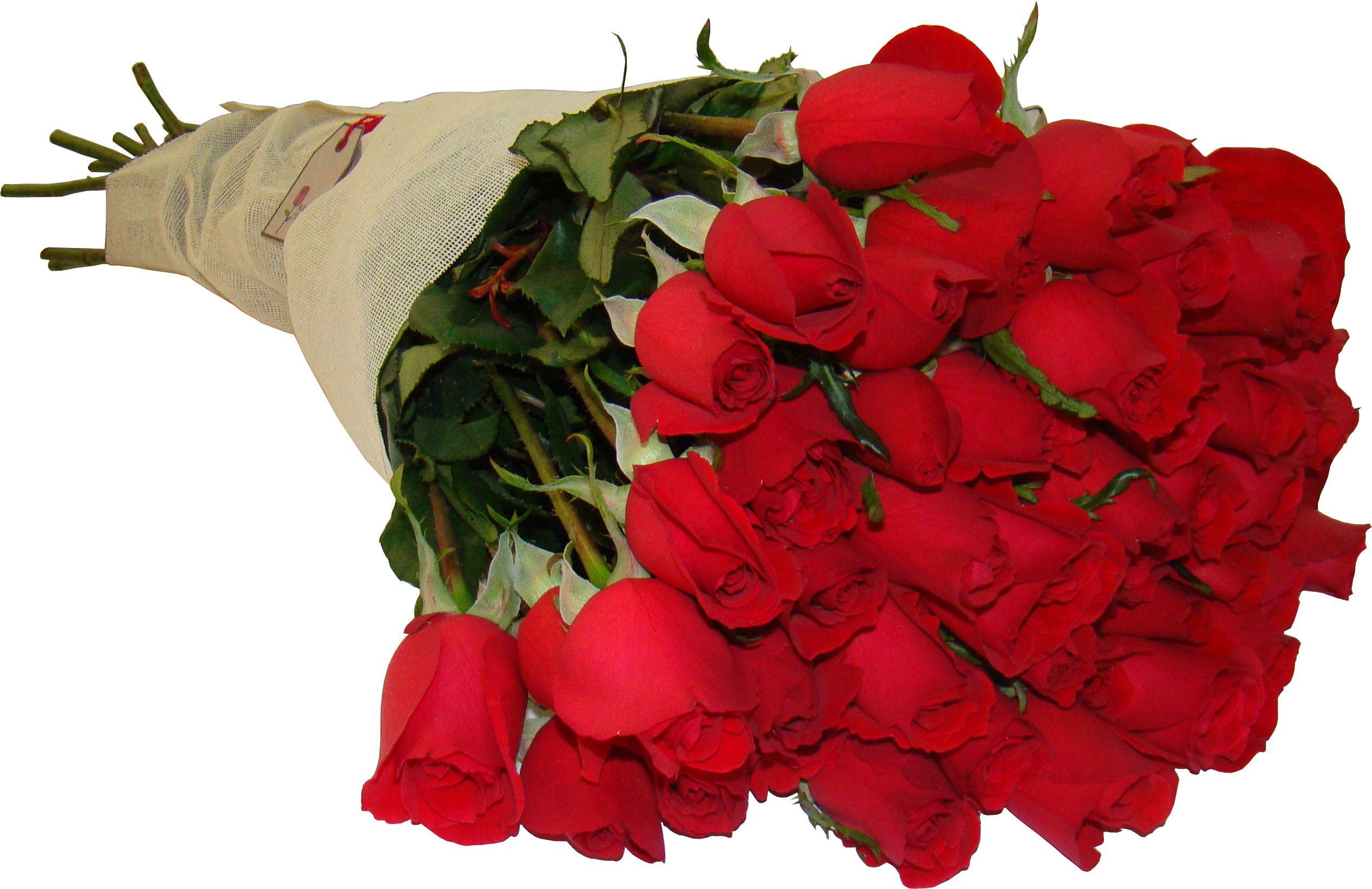 Ramo De 50 Rosas Rojas De Flores Toluca Ramos De Rosas