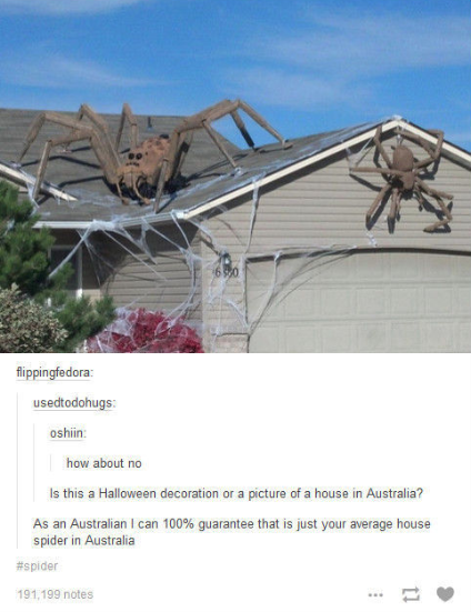 Photo of 23 Halloween Tumblr Posts To Tide You Over Until October 31st