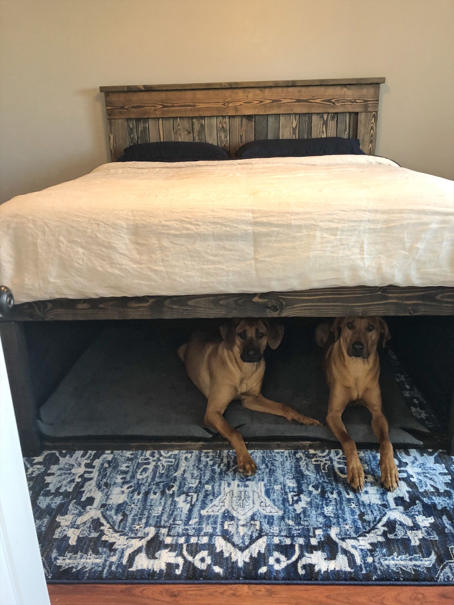California king wooden bed with dog den underneath dog