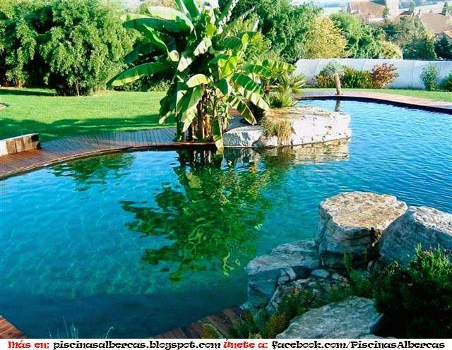14 Ideas para piscinas