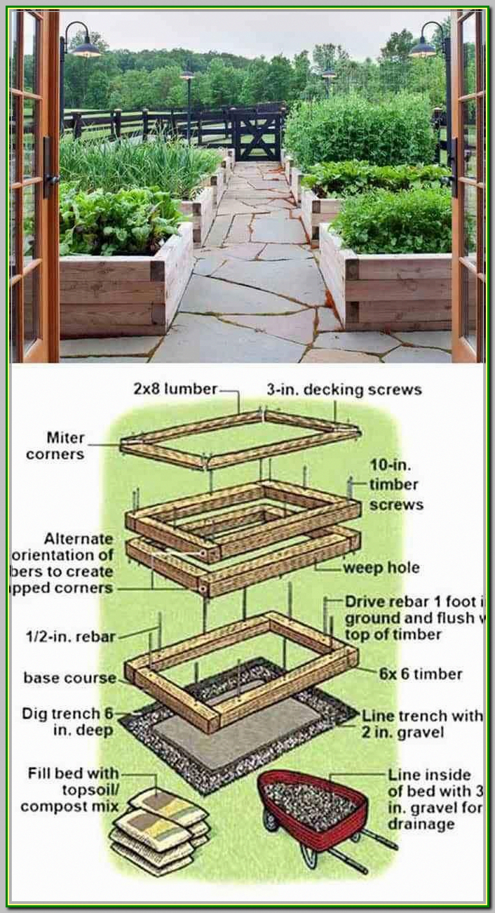 With The Knowledge You Have You Should Be Ready For Anything The Advice Yo Building Raised Garden Beds Building Raised Vegetable Garden Raised Garden Beds Diy