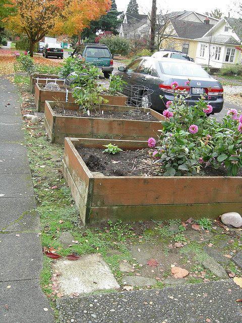 Parking Strip Planter Boxes Edible Garden Yard Care Planter Boxes