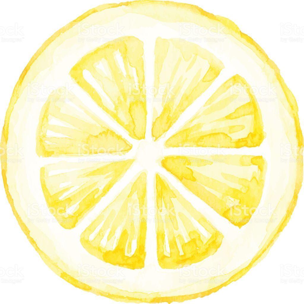 Watercolor Lemon Slice Royalty Free Watercolor Lemon Slice Stock Vector Art Amp More Images Of Lemon Fruit Lemon Painting Lemon Art Lemon Watercolor