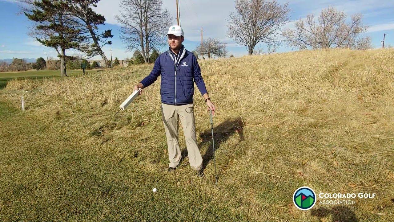 21++ Burrowing animal golf rule information