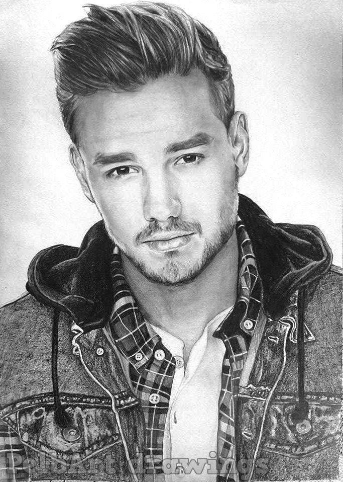 Black and white pencil portrait of British singer Liam ...