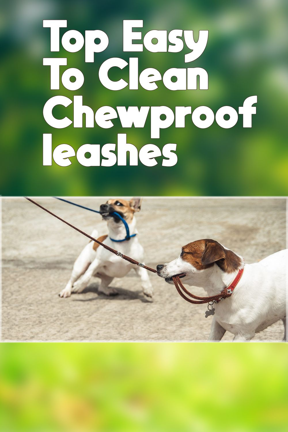 Find Some Best Chew Proof Leashes Dogleashes Dogleashwalmart