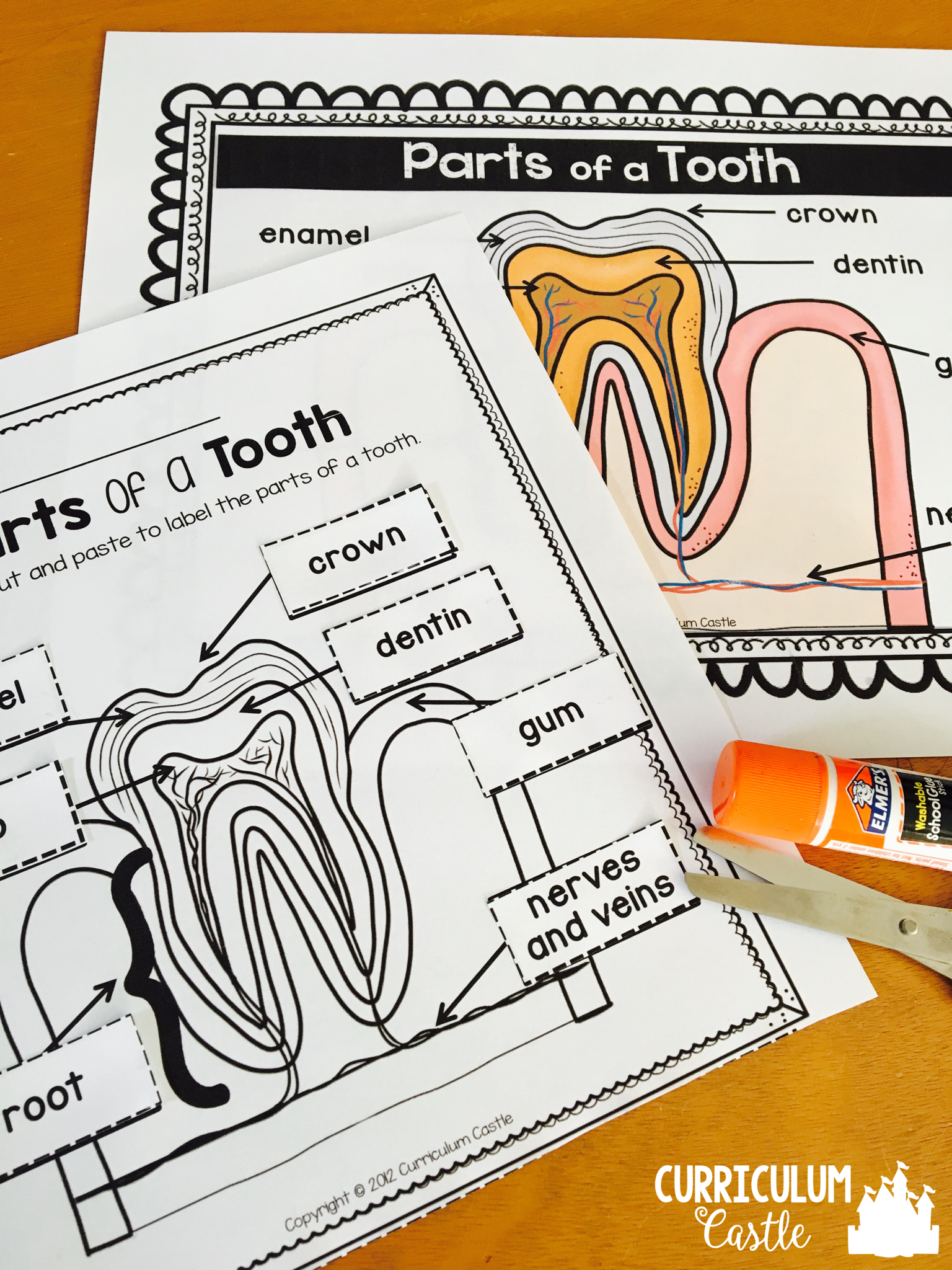 Hygiene And Healthy Habits Hand Washing Amp Brushing Teeth Dental Health