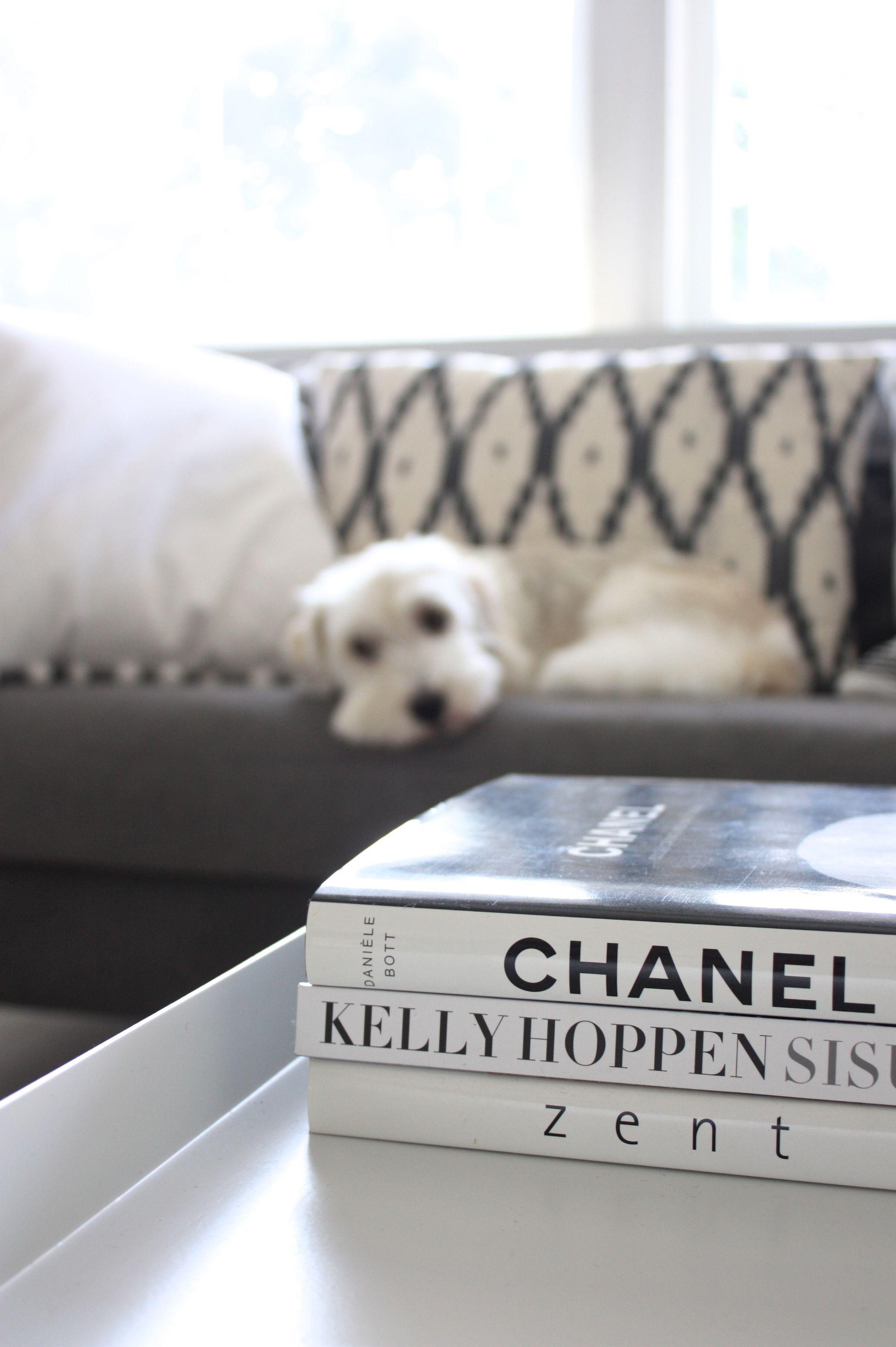 homevialaura | living room | Gauhar Ikat cushion | coffee table books | coton de tulear dog