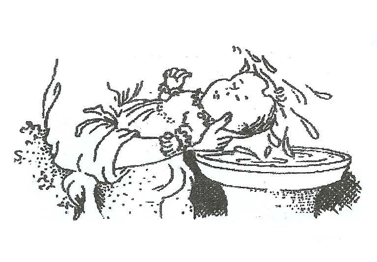 pin voorjou prorege op doop lijntekeningen