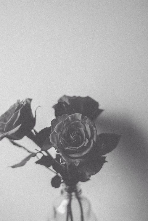 Aesthetic Wallpapers Tumblr Black And White Aesthetic Gray Aesthetic Black And White Photo Wall