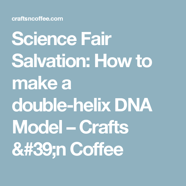 Science Fair Salvation: How to make a double-helix DNA Model – Crafts 'n Coffee